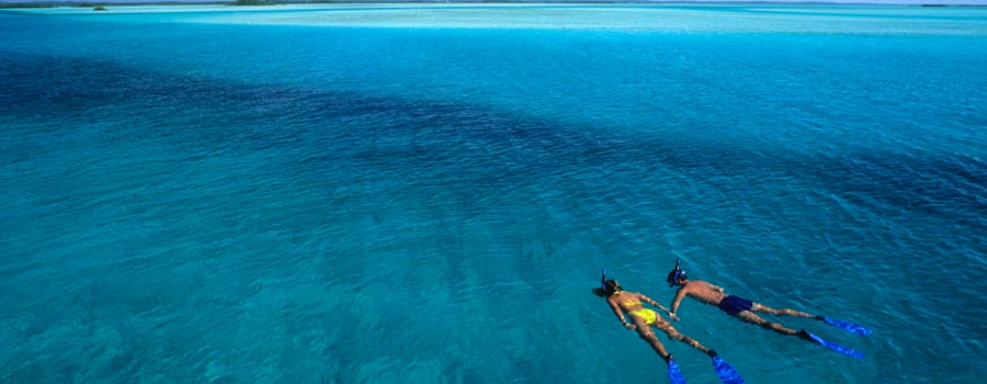 best snorkeling vacations, best snorkeling vacation, best Fiji snorkeling, best Caribbean snorkeling